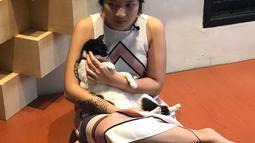 Danilla membuat akun Instagram pribadi untuk kucing kesayangannya, Meh. Dengan akun Instagram @meiyranti ini sudah memiliki 2 ribu lebih followers lho. (Liputan6.com/IG/@meiyranti)