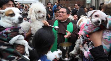Imam Katolik Fermin Pena  melakukan pemberkatan pada hewan peliharaan dengan air suci di luar gereja San Francisco di Lima, Peru, Minggu (6/10/2019). Pemberkatan hewan ini untuk menghormati Santo Fransiskus yang dikenal sebagai santo pelindung bagi binatang dan lingkungan hidup. (AP/Martin Mejia)