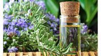 Ternyata serangga tak suka dengan aroma dari minyak esensial yang disebarkan di rumah.