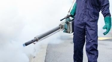 Fogging Kurang Berhasil Memberantas Nyamuk DBD