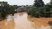 Suasana aliran Sungai Ciliwung yang meluap di kawasan Pejaten Timur, Jakarta, Jumat (26/4). Banjir kiriman melalui Sungai Ciliwung yang berasal dari Bogor tersebut mengakibatkan sejumah wilayah di Ibukota terendam banjir.(Www.sulawesita.com)