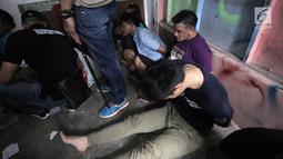 Sejumlah tersangka tertunduk lesu usai polisi menggerebek peredaran narkoba di kawasan Kampung Ambon, Cengkareng, Jakarta Barat, Rabu (24/1). Penggerebekan dilakukan oleh 150 personel gabungan dari Brimob dan TNI. (Liputan6.com/Arya Manggala)