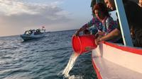 Menteri KKP Susi Pudjiastuti melepas benih lobster di Banyuwangi. Dok: Humas Kementerian KKP