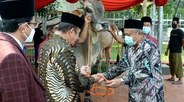Jokowi Serahkan Sapi Kurban Seberat 1 Ton ke Masjid Istiqlal