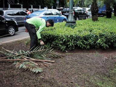 Petugas pertamanan membersihkan tanaman dan rumput yang rusak usai unjuk rasa massa Partai Hanura di depan Gedung KPU, Jakarta, Senin (21/1). Tanaman dan rumput di sekitar Gedung KPU rusak akibat terinjak-injak pengunjuk rasa. (Liputan6.com/Faizal Fanani)