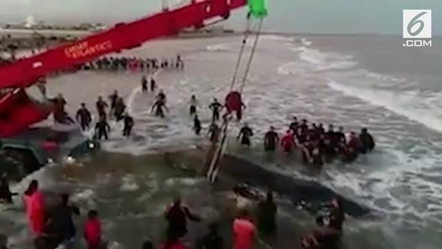 Seekor paus mati terdampar di Pantai Mar Del Plata, Argentina.