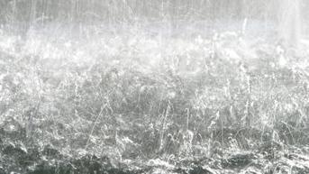 Cuaca Hari Ini Sabtu 18 September 2021, Jakarta Berpotensi Hujan Dibarengi Petir