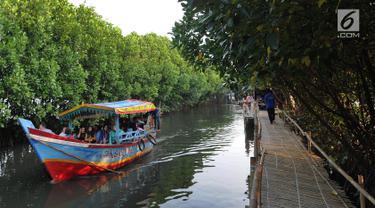 Perahu wisatawan melewati hutan mangrove di Sungai Rindu, Desa Hurip Jaya, Babelan, Bekasi, Jumat (7/6/2019). Berkeliling naik perahu melewati kawasan hutan mangrove di Sungai Rindu ini menjadi daya tarik para wisatawan lokal. (merdeka.com/Arie Basuki)
