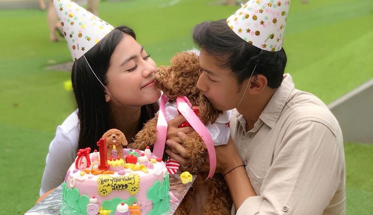 Anjing bewarna coklat tersebut menjadi kado ulang tahun untuk Feli di usianya yang ke-24 tahun.  Menginjak usia 1 tahun, pasangan ini membuat pesta ulang tahun untuk Yeppo, hewan kesayangan dua sejoli ini. (Liputan6.com/IG/felicyangelista_)