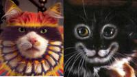 Dua wajah kucing yang 'dicat'.