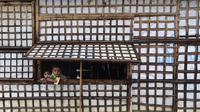 Anak-anak pengungsi Rohingya melihat keluar dari rumah saat hujan lebat di kamp pengungsi Kutupalong di Ukhia 12/9/2019). Kamp ini adalah salah satu dari dua kamp pengungsi yang dikelola pemerintah di Cox's Bazar, kamp yang satunya lagi adalah kamp pengungsi Nayapara. (AFP Photo/Munir Uz Zaman)