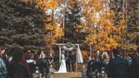 Ilustrasi pesta pernikahan. (unsplash.com)