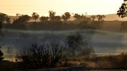 """Matahari terbit di atas ladang pertanian yang terdampak kekeringan di Duri, New South Wales, 7 Agustus 2018. Seluruh wilayah negara bagian itu dinyatakan mengalami kekeringan dan 25 persennya berada dalam kondisi """"kekeringan hebat"""". (SAEED KHAN/AFP)"""