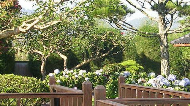 6 Destinasi Wisata Puncak Bogor Dan Sekitarnya Alamnya