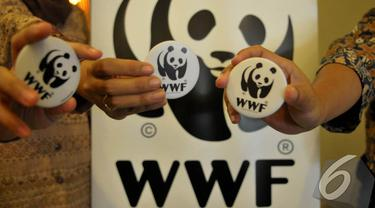 Cara Pantau Hiu Paus Versi WWF Indonesia