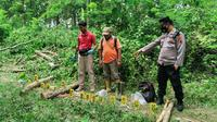 Polisi saat olah TKP di hutan Magersaren, Kecamatan Jiken, Kabupaten Blora, Jawa Tengah (Liputan6.com/Ahmad Adirin)