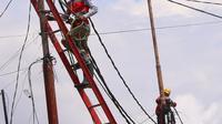Petugas melakukan pemeliharaan kabel listrik di Jakarta, Sabtu (26/12/2020). PT PLN (Persero) menjamin ketersediaan pasokan listrik sepanjang Natal dan Tahun Baru 2020-2021. (Liputan6.com/Angga Yuniar)