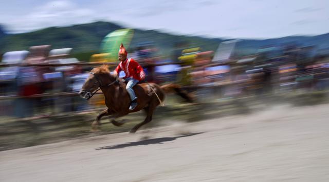 Seorang joki muda memacu kuda pada tradisi lomba pacuan kuda tradisional Gayo di Takengon, provinsi Aceh tengah, Sabtu (31/8/2019). Pacuan Kuda tradisional yang merupakan tradisi masyarakat Tanah Gayo tersebut diselenggarakan dua kali dalam setahun. (CHAIDEER MAHYUDDIN/AFP)