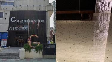 Viral Restoran Ini Dilempari Ratusan Kecoa, Alasannya Bikin Ngelus Dada