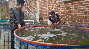 Dibantu salah satu masyarakat sekitar, Aceng Busyrol tengah memberikan pakan ikan pada budidaya ikan lele secara Biofok di pesantren Al-Hidayah Nangoh, Garut, Jawa Barat.
