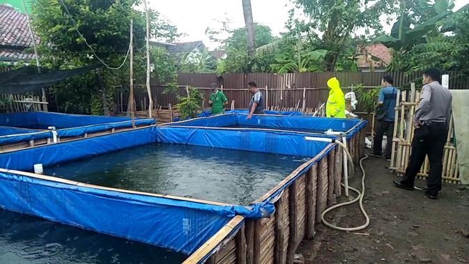 Balita tewas di kolam lele (Liputan6.com/Fajar Eko Nugroho)