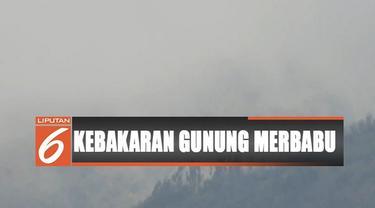 Petugas wilayah satu Taman Nasional Gunung Merbabu menduga kebakaran dipicu aktivitas pembakaran yang dilakukan salah satu warga di daerah Kabupaten Magelang, tempat titik awal api berasal.