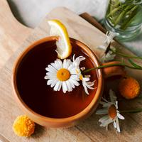 ilustrasi teh chamomile/copyright by Shutterstock