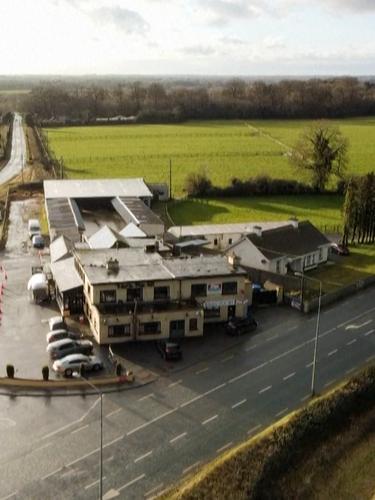 Lockdown COVID-19, Bar di Irlandia Alih Fungsi Jadi Rumah Sakit Satwa Liar Vertikal