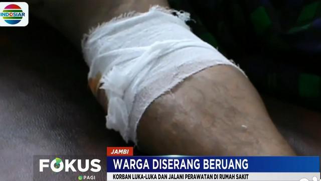 Pria berusia 29 tahun harus menjalani perawatan setelah menjadi korban keganasan empat ekor beruang liar pada Selasa pagi.
