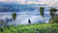 Pemandangan Gunung Berapi Batur yang dilihat dari Desa Pinggan | via: bali.mehthesheep.com