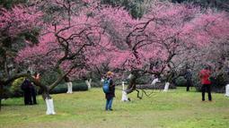 Orang-orang mengunjungi taman botani Hangzhou di Hangzhou, Provinsi Zhejiang, China timur (19/2/2020). Sebagai upaya pencegahan coronavirus baru, kawasan indah tersebut telah menetapkan batas jumlah pengunjung saat ini dan semua yang memasuki kawasan itu diwajibkan mengenakan masker. (Xinhua/Zheng M