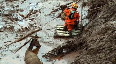 Pemadam kebakaran berusaha menyelamatkan seekor kuda dan anaknya yang terjebak lumpur setelah sebuah bendungan limbah jebol di desa Bento Rodrigues, Brasil, Jumat (6/11). (AFP PHOTO / CHRISTOPHE SIMON)