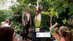 Seorang pengujung berpose di samping bunga bangkai Titan Arum asal Sumatera, yang dipamerkan di taman botani, Brussels, Belgia, Kamis (28/7). Bunga bernama latin 'Amorphophallus titanum' itu menyedot perhatian wisatawan di sana. (REUTERS/Francois Lenoir)