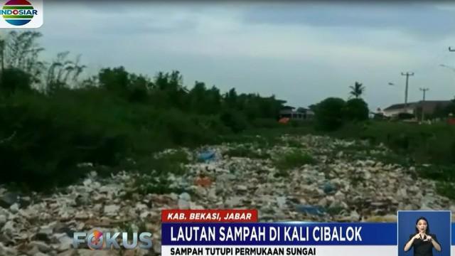 Selain sampah rumah tangga, sepanjang aliran sungai juga dipenuhi tumpukan eceng gondok hingga menyebabkan air sungai tidak mengalir.