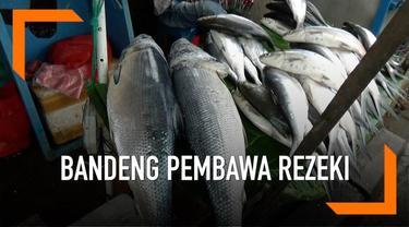Imlek membawa rezeki bagi pedagang ikan bandeng di Rawa Belong, Jakarta Barat.
