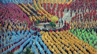 Tari payung yang berhasil memecahkan rekor dunia ini diramaikan oleh kehadiran 10.580 penari. (Foto: Dailymail)