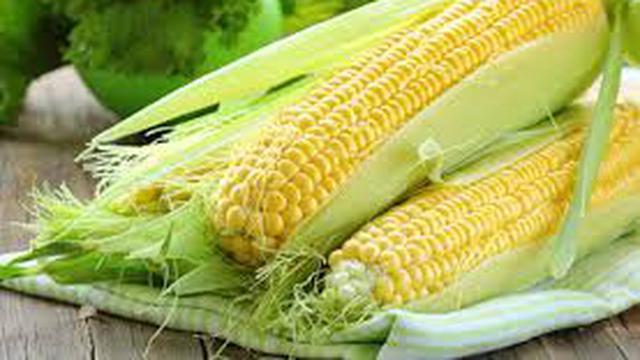 4 Makanan Pokok Pengganti Nasi Dari Nasi Jagung Hingga Singkong
