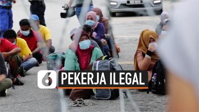 Thumbnail malaysia tangkap pekerja ilegal cegah virus corona