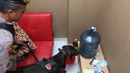 Petugas Polres Jaksel menggunakan anjing pelacak menyisir salah satu sudut ruangan kamar Apartemen Kalibata City, Jakarta, Kamis (25/2). Razia digelar dalam rangka mengantisipasi peredaran dan penyalahgunaan narkoba. (Liputan6.com/Herman Zakharia)