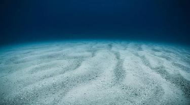 Ilustrasi dasar laut