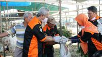 Dinas Pertanian Kabupaten Gresik, Jawa Timur memaparkan sejumlah daftar harga hewan kurban kambing hingga sapi. (Foto:Liputan6.com/Dian Kurniawan)