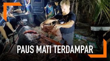 Seekor paus mati terdampar di pesisir pantai Filipina. Para aktivis menemukan sampah plastik sebanyak 40 kg di dalam perut paus tersebut.