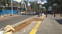 Pohon-pohon tabebuya telah berdiri tegak, tertanam di sepanjang trotoar Cikina, Jakarta. (Liputan6.com/Ade Nasihudin Al Ansori)