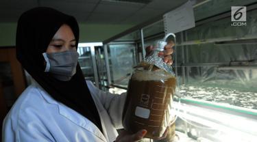 Peneliti mengecek tabung berisi mikroorganisme bawah laut di Laboratorium BPPT, Serpong, Tangsel, Banten, Kamis (10/1). Mikroorganisme tersebut dapat digunakan sebagai pengganti minyak bumi (bio fuel). (Merdeka.com/Arie Basuki)