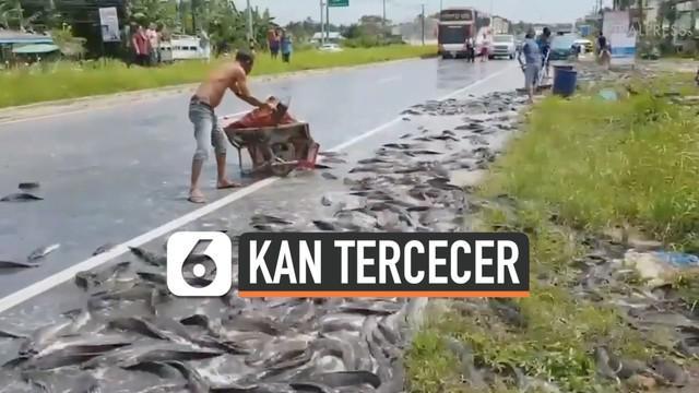 Sebuah truk bermuatan ikan tergelincir dan terbalik ketika melintasi jalan di Krabi, Thailand. Akibatnya, sebanyak dua ton ikan lele tercecer di jalanan.