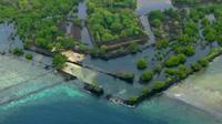 Misteri Kota Kuno di Pulau Terpencil Tengah Samudra Pasifik (Science Channel's What on Earth?)