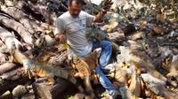Ramon Medina Archundia dari Meksiko menghabiskan waktunya untuk memelihara ratusan iguana. Foto : webcamsdemexico/Youtube