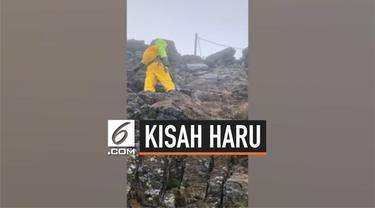 Seorang anak berusia 8 tahun penuhi janji pada mendiang ibunya untuk mendaki gunung tertinggi di Taiwan. Ia pun berhasil mendaki sampai puncak gunung.