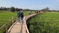 Agrowisata Paloh Naga (Liputan6.com/Reza Perdana)