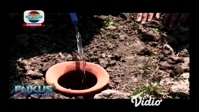 Ditengah krisis air yang melanda sejumlah wilayah sehingga berdampak pada sektor pertanian. Ada solusi yang ditawarkan oleh sekelompok mahasiswa di Jember, Jawa Timur yaitu sistem irigasi kuali.